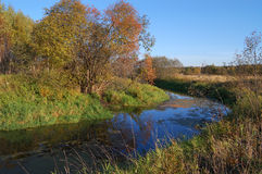 δέντρα ποταμών φθινοπώρου κίτρινα Στοκ φωτογραφία με δικαίωμα ελεύθερης χρήσης
