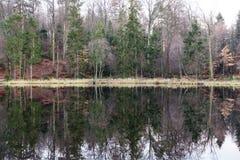 Δέντρα που αντανακλώνται στη λίμνη Στοκ Φωτογραφία