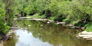 Δέντρα που απεικονίζουν στον ποταμό στοκ φωτογραφία με δικαίωμα ελεύθερης χρήσης