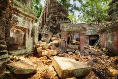 Δέντρα που αυξάνονται μεταξύ των καταστροφών του ναού Preah Khan σε Angkor Wat Στοκ φωτογραφία με δικαίωμα ελεύθερης χρήσης