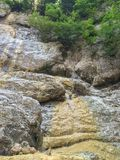 Δέντρα που αυξάνονται πετρώδες mountainside στοκ φωτογραφία με δικαίωμα ελεύθερης χρήσης