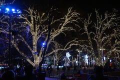 Δέντρα που διακοσμούνται για τα Χριστούγεννα Όμορφος φωτισμός στοκ φωτογραφία με δικαίωμα ελεύθερης χρήσης