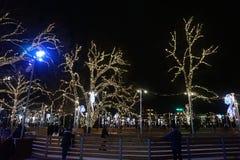 Δέντρα που διακοσμούνται για τα Χριστούγεννα Όμορφος φωτισμός στοκ φωτογραφία