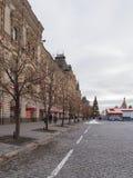 Δέντρα που διακοσμούνται γυμνά Στοκ φωτογραφίες με δικαίωμα ελεύθερης χρήσης