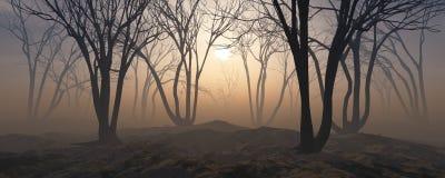 Δέντρα στην ομίχλη Ο καπνός στο δάσος ελεύθερη απεικόνιση δικαιώματος