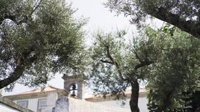 Δέντρα στη μικρή παλαιά πόλη φιλμ μικρού μήκους