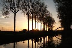 Δέντρα στο ηλιοβασίλεμα το φθινόπωρο στο Scheldemeersen σε Spiere, δυτική Φλαμανδική περιοχή, Βέλγιο Στοκ Φωτογραφίες