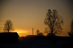 Δέντρα στο sunsett Στοκ φωτογραφία με δικαίωμα ελεύθερης χρήσης