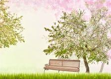Πάγκος κάτω από το δέντρο μηλιάς με τα λουλούδια Στοκ Εικόνες