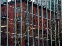 Δέντρα, τοίχοι γυαλιού και αντανακλάσεις στην οδό Alberni Στοκ εικόνες με δικαίωμα ελεύθερης χρήσης