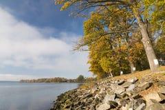 Δέντρα το φθινόπωρο στο φράγμα λιμνών Στοκ Φωτογραφίες