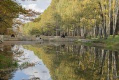 Δέντρα φθινοπώρου με τη χρωματισμένη ανάπτυξη φυλλώματος στο πάρκο κατά μήκος Στοκ εικόνες με δικαίωμα ελεύθερης χρήσης