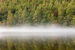 Δέντρα φθινοπώρου που απεικονίζουν στη λίμνη με την υδρονέφωση στοκ εικόνα με δικαίωμα ελεύθερης χρήσης