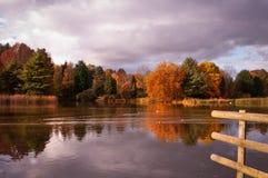Δέντρα φθινοπώρου που απεικονίζουν στη λίμνη Στοκ εικόνες με δικαίωμα ελεύθερης χρήσης