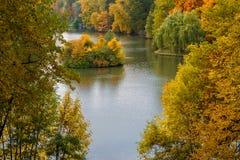 Δέντρα φθινοπώρου στο πάρκο στοκ φωτογραφίες με δικαίωμα ελεύθερης χρήσης