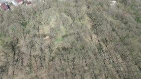 δέντρα φύλλων Πάρκο της πόλης Stavropol Ρωσία πρώιμη άνοιξη απόθεμα βίντεο