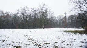 Δέντρα χειμερινού χιονιού, δρόμος πάρκων, άσπρες σειρές δέντρων αλεών Στοκ εικόνες με δικαίωμα ελεύθερης χρήσης