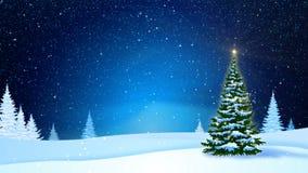 Δέντρα χιονοπτώσεων και έλατου που καλύπτονται με το hoarfrost και το χιόνι στο δάσος βραδιού το χειμώνα Περιτυλιγμένη κίνηση γρα ελεύθερη απεικόνιση δικαιώματος