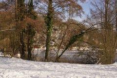 Δέντρα, χιόνι και ice-cold λίμνη - τοπία χειμερινά - μπροστινή άποψη Στοκ φωτογραφία με δικαίωμα ελεύθερης χρήσης