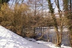 Δέντρα, χιόνι και ice-cold λίμνη - τοπία χειμερινά Στοκ εικόνα με δικαίωμα ελεύθερης χρήσης