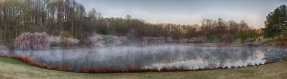Δέντρα gazebo και κερασιών λιμνών στην ομίχλη Στοκ φωτογραφίες με δικαίωμα ελεύθερης χρήσης