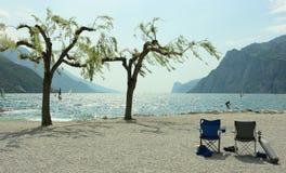 δέντρα surfers εδρών στοκ φωτογραφία