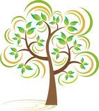 δέντρο άνοιξης Στοκ Εικόνες