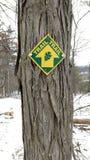 Δέντρο άσπρων καρυδιών Shagbark με το δείκτη ιχνών στοκ εικόνα με δικαίωμα ελεύθερης χρήσης