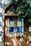 Δέντρο έξω στο παράθυρο Στοκ Εικόνες