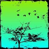 δέντρο ανασκόπησης grunge απεικόνιση αποθεμάτων