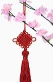 Δέντρο ανθών και κινεζική νέα κρεμώντας διακόσμηση έτους Στοκ φωτογραφίες με δικαίωμα ελεύθερης χρήσης