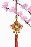 Δέντρο ανθών και κινεζική νέα κρεμώντας διακόσμηση έτους Στοκ εικόνα με δικαίωμα ελεύθερης χρήσης