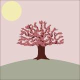Δέντρο ανθών κερασιών απεικόνιση αποθεμάτων