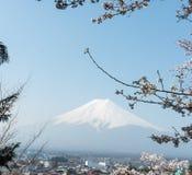 Δέντρο ανθών κερασιών Sakura με το βουνό του Φούτζι στην Ιαπωνία Στοκ φωτογραφίες με δικαίωμα ελεύθερης χρήσης