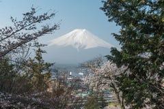 Δέντρο ανθών κερασιών Sakura με το βουνό του Φούτζι στην Ιαπωνία Στοκ φωτογραφία με δικαίωμα ελεύθερης χρήσης