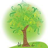 Δέντρο αχλαδιών με τον κήπο συγκομιδών φύλλων Στοκ Εικόνες