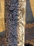 Δέντρο γκράφιτι Στοκ Φωτογραφίες
