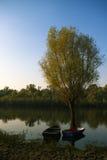 δέντρο δύο λιμνών βαρκών Στοκ Εικόνες