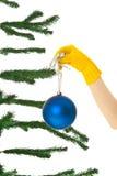 δέντρο επιδέσμου Χριστο&ups Στοκ Εικόνες