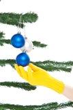 δέντρο επιδέσμου Χριστο&ups Στοκ Φωτογραφίες