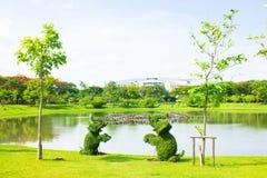 Δέντρο ελεφάντων Στοκ φωτογραφία με δικαίωμα ελεύθερης χρήσης