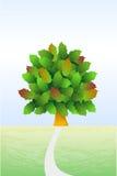 δέντρο ζωής Στοκ Εικόνα