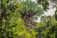 Δέντρο ζωικών βασίλειων της Disney της ζωής Ορλάντο Φλώριδα Στοκ εικόνα με δικαίωμα ελεύθερης χρήσης