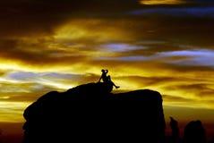 δέντρο ηλιοβασιλέματος j Στοκ φωτογραφία με δικαίωμα ελεύθερης χρήσης