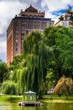 Δέντρο ιτιών οικοδόμησης και κλάματος στο δημόσιο κήπο στη Βοστώνη Στοκ φωτογραφία με δικαίωμα ελεύθερης χρήσης