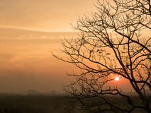 Δέντρο και ήλιος τοπίων σκιαγραφιών στο βουνό Στοκ φωτογραφίες με δικαίωμα ελεύθερης χρήσης