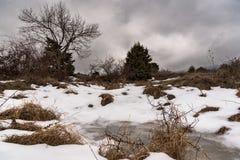 Δέντρο και λίγη παγωμένη λίμνη Δραματικό γκρίζο χειμερινό τοπίο ουρανού Ρωσία, Stary Krym Στοκ φωτογραφίες με δικαίωμα ελεύθερης χρήσης