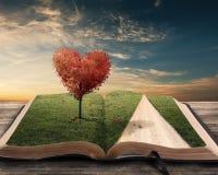 Δέντρο και βιβλίο καρδιών Στοκ εικόνα με δικαίωμα ελεύθερης χρήσης