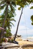 Δέντρο καρύδων στην παραλία καρύδων στο νησί γιων, Kien Giang, Βιετνάμ Κοντά στο νησί Phu Quoc Στοκ Φωτογραφία