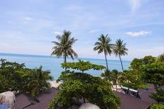 Δέντρο καρύδων στην παραλία καρύδων στο νησί γιων, Kien Giang, Βιετνάμ Κοντά στο νησί Phu Quoc Στοκ εικόνα με δικαίωμα ελεύθερης χρήσης